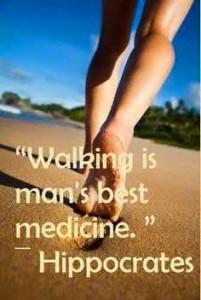 Walking buddy -Menopause Fitness Programme